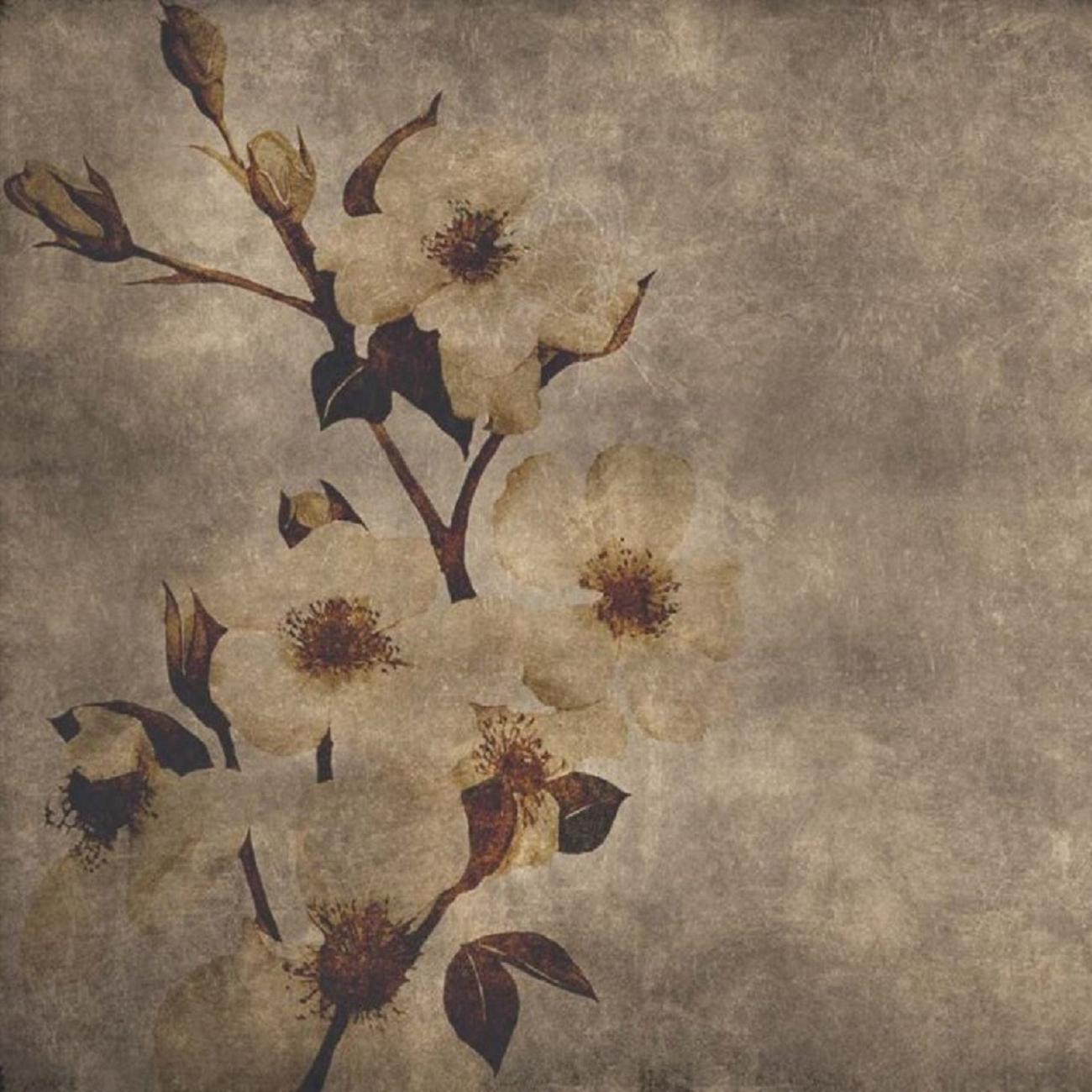 instabilelab wallpaper winter flowers - tattahome