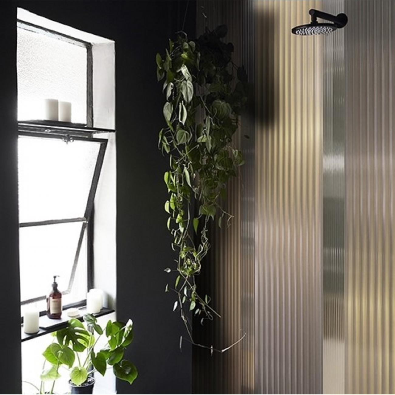 Wall Deco Wet System Singing In The Rain Wallpaper Tattahome