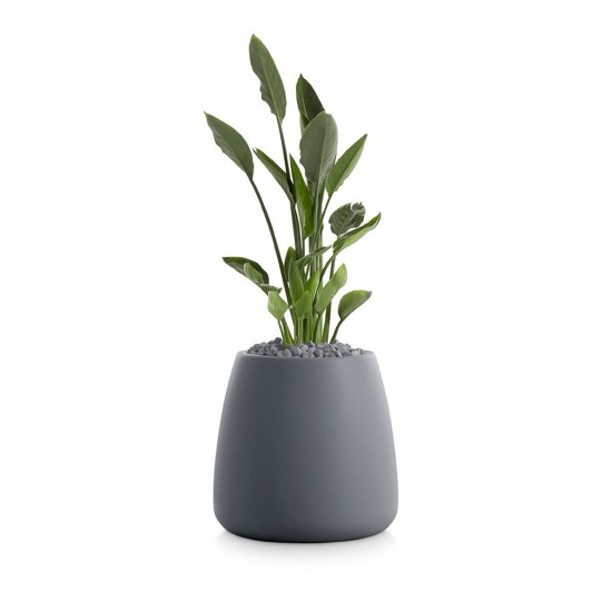 DIABLA GOBI PLANT POT