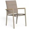 Talenti Timber dining armchair