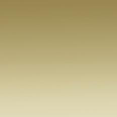 61020 PVD GLOSSY GOLD